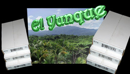 El Yunque P&D Quarters QY0 & QY5 100 Coin Bags + R74 P&D Rolls All Seale... - $160.70