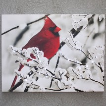 Christmas Holiday Red Cardinal Winter Tree Scene Lighted Canvas Wall Art... - $43.06
