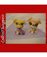 LPS Littlest Pet Shop Lot of 2 Boxer Puppies Green/Purple Eyes 235 451 G... - $12.22
