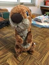 "Disney Store Authentic Original Finding Dory Sea Otter Plush Stuffed Toy 10"" - $19.59"