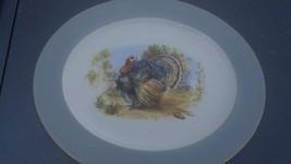 Homer Laughlin Eggshell Turkey platter - $24.99
