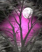 Month of Personal Grey Magic Spell Casting~30 days of spells~grey magic ... - $235.00