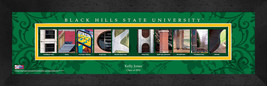 Black Hills State University Officially Licensed Framed Campus Letter Art - $39.95