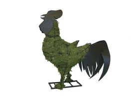"Rooster 28"" Moss Topiary Sculpture - $156.70"