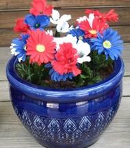 Flower pots 005 thumb200