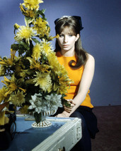Barbra Streisand 1960's Pose with Flowers 16x20 Canvas - $69.99