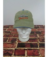 US Air Force THUNDERBIRDS Cap Hat Small Size Small Mens/Youth Military F... - $19.59