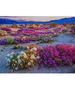 Supermee Floral Tapestry White and Purple Flower Tapestry Nature Landsca... - $12.25