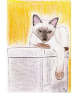 8x10 Custom Pet Cat Kitten Portraits Kat-Renee Kittel - $20.00