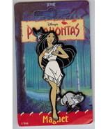 Disney Pocahontas Flit bird Meeko raccoon  Magnet - $9.64