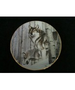 BROKEN SILENCE collector plate AL AGNEW Year of the Wolf WOLVES Wildlife - $24.99