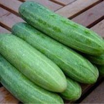 Best Price Eureka F1 Cucumber, Am Diy Home Garden Vegetables 50 Seeds - $47.99
