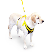 Discontinued - Safety Seat Belt Harness for Dogs Size Small - $24.95