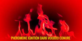 PHEROMONE IGNITION DARK VOODOO CONURE - haunted  - $59.00