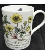 Staffordshire Mug Elizabethan Creeping Buttercup Bone China Botanical Moth - $19.79