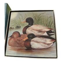 "5 Nashco Hard Coasters Cork-Backed Mallard Ducks 3.75"" Square in Box - $6.99"