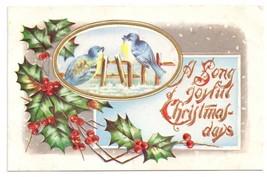Christmas Blue Birds Singing on Fence Holly Embossed Gilt Vintage Postcard - $6.69