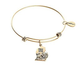 State of Michigan Charm Bangle Bracelet (gold-plated-base)