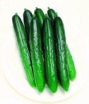 SHIP From US,25 Seeds Progress Japanese HybridCucumber,DIY Healthy Vegetable AM - $24.99