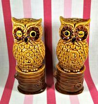 Wonderful Kitschy Vintage Figural Hoot Owls on Wood Stumps Salt and Pepp... - $12.00