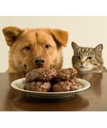 Pet Recipes Dogs Cats Birds and Horses eBook Di... - $1.50