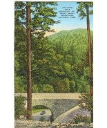 200-Loop near Newfound Gap, Great Smoky Mountains National Park 1930s Po... - $4.99