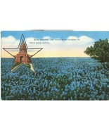 Blue Bonnets, The Texas State Flower, Texas State Capitol, 1946 used Pos... - $4.99