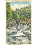 Foot Bridge on the Trail of the Chimney Tops, Great Smoky Mountains Park - $5.99