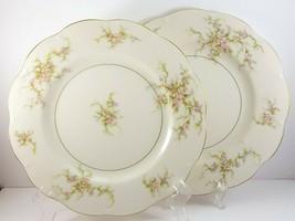 """Theo Haviland NY Rosalinde Dinner Plates 10.5"""" Set of 2 Ivory Porcelain ... - $31.68"""