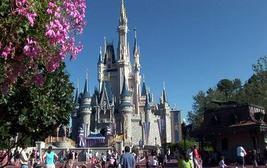Disneyworld dvd disc set souvenir Mickey Mouse Disneyland cd Walt Disney - $85.00