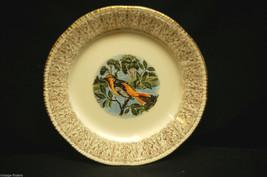 Homer Laughlin Bread & Butter Plate Oriole Bird Pattern Gold Filigree Rim USA a - $8.90