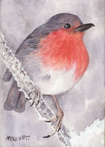 ACEO Original Painting English Robin bird wildlife fly wing spring snow ... - $15.50