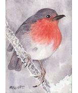 ACEO Original Painting English Robin bird wildlife fly wing spring snow ... - $16.00