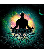 Haunted : Space Clearing and Protection from Earthly Forces Spiritual At... - $45.00