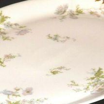 Haviland France Limoges Serving Platter AA19-1540 Vintage image 4