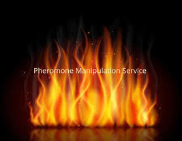 Pheromone Manipulation Service - The Power to intoxicate targets - $59.99