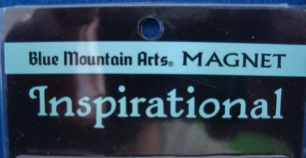 Blue Mountain Arts Inspirational Magnet, I Prayed for You Today