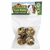 Exotic Nutrition Yum Balls! - Rodent Munchies - Pet Treat for Squirrels,... - $8.99