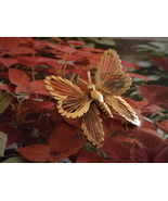 Vintage Monet Gold Toned Butterfly Brooch Pin Like New Condi - $28.00