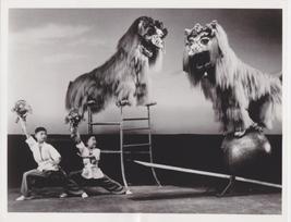 Shenyang Acrobat Troupe Lion Dance 8x10 Photo 2012400 - £7.84 GBP