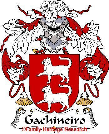 GACHINEIRO Spanish Coat of Arms GACHINEIRO Family Crest Bonanza