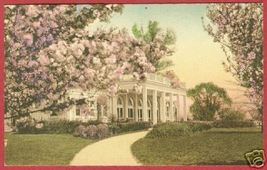 WASHINGTON DC Hains Pt Cherry Blossoms HC Postcard BJs - $10.00