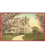 WASHINGTON DC Hains Pt Cherry Blossoms HC Postcard BJs - $10.00