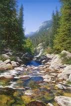 Abundant Waters by Larry Dyke Landscape Mountain Stream Canvas Giclee 30x20 - $395.01