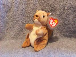 Nuts The Squirrel Ty Beanie Baby Retired 1998 - $5.00