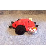 Ty Lucky Lady Bug with Painted Spots  - $5.00