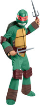 Deluxe Child Boys Raphael Teenage Mutant Ninja Turtle Halloween Costume ... - $27.95