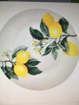 6 Lemon Printed Ceramic  SET OF 6 Dinner Plates 10.5 in. - $23.50