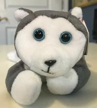 "Vintage TY Beanie Baby 1996, ""Nanook"" the Husky- FREE SHIPPING - $7.69"