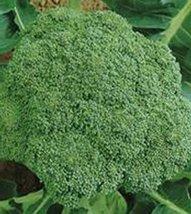 5g / 100 Seeds of Broccoli Vitaminnaya - $18.93